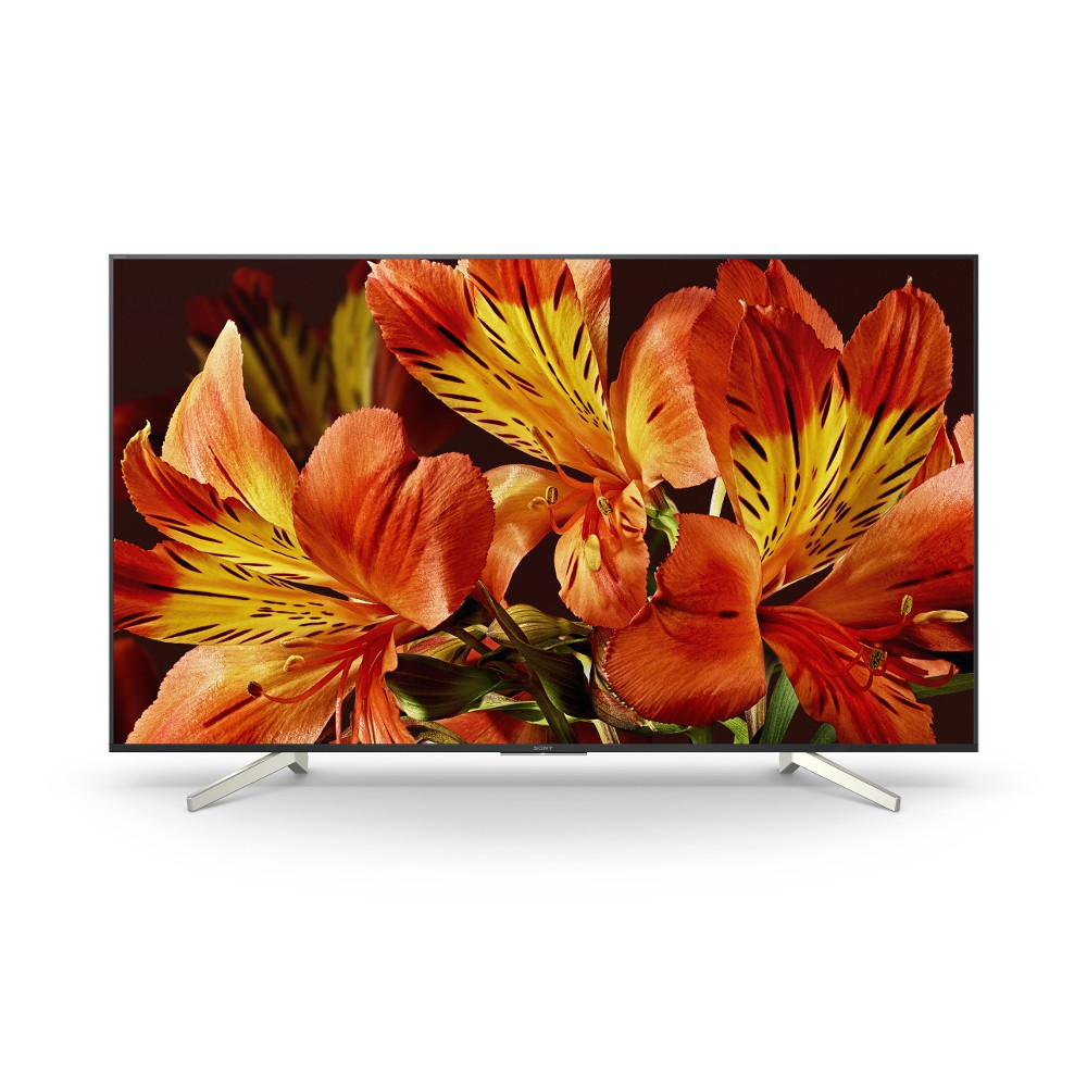 Tv 65 Sony Kd65xf8596 4k Uhd Hdr X1 Smart Tv