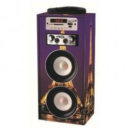 Altavoz Karaoke + Bluetooth Digivolt Hifi-16 Paris