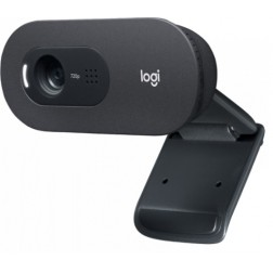 Webcam Logitech C505e Hd Micro